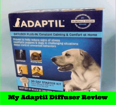 diffuser-review-main-thumbnail